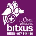 Clinica-veterinaria-bitxus