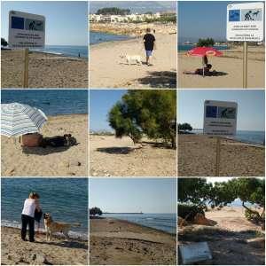 Playa De Perros En Cambrils