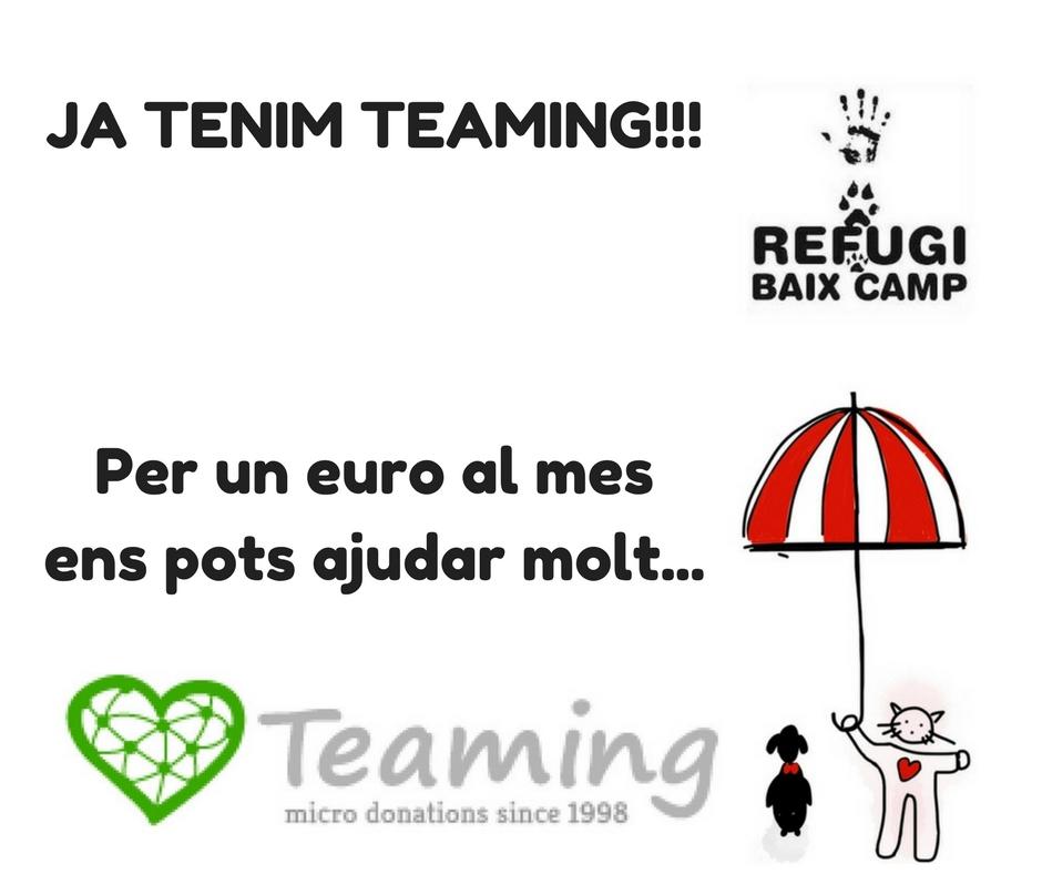 teaming-1
