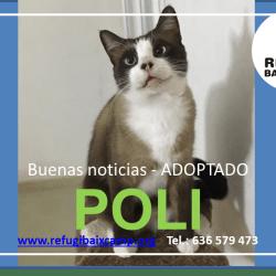 POLI ADOPTADO