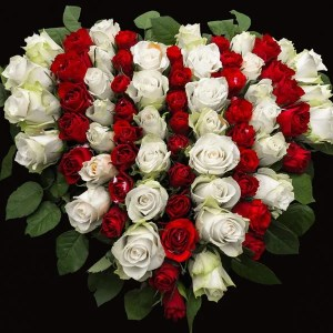 Mixture of red and white roses in heart shape.