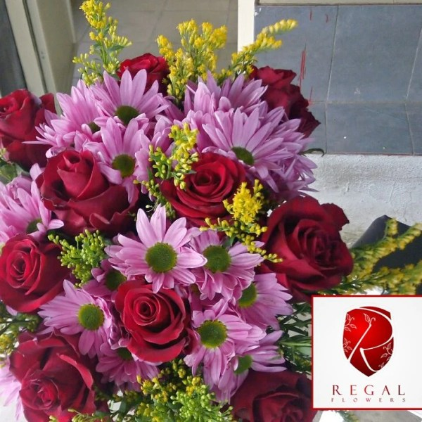 Matte red coloured roses arranged with pink and white chrysanthemum flowers in a ficus border note
