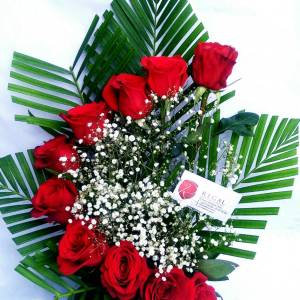 Red roses arranged with sparkling white million star/gypsophila leaves and greens.