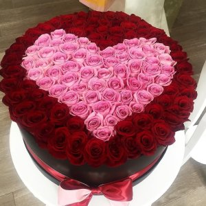 VIP Mon Coeur