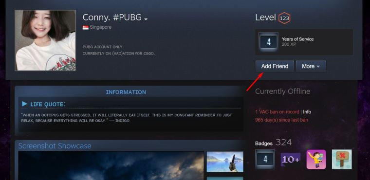 Add Friends on Steam via Profile