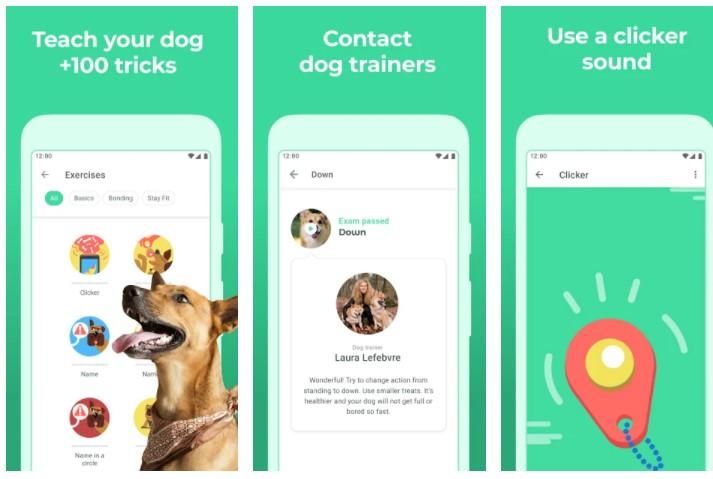 Best Dog Whistle Apps Dogo