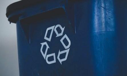 Best Recycle Bin Apps