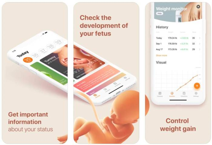 Pregnancy and Due Date Tracker