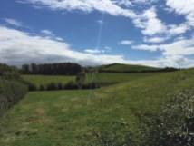 Castleblayney Fields