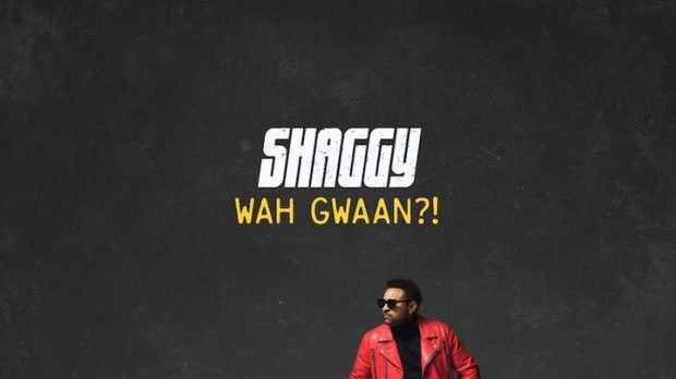Image result for Album: Shaggy – Wah Gwaan?!