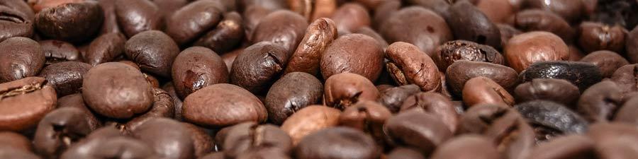 Équivalence caféine et théine