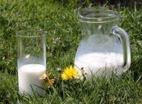 Pesticides dans le lait