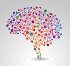 Illustration des blocs mémoriels d'un cerveau
