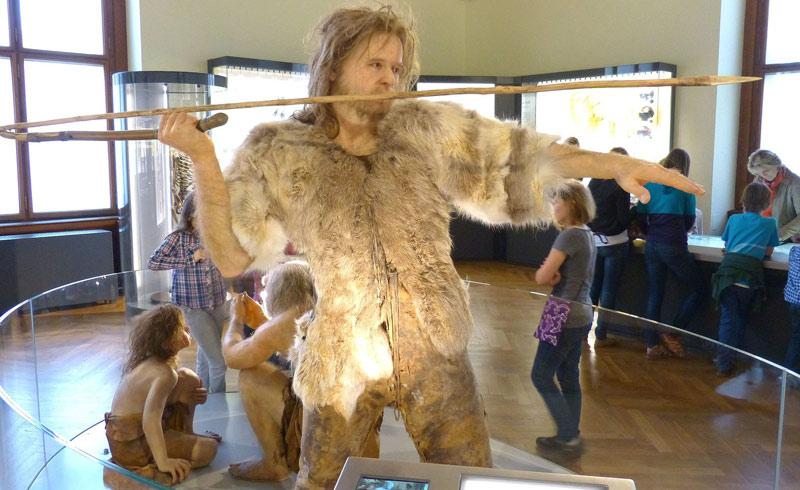 Photographie d'un chasseur Homo Sapiens au Muséum d'histoire naturelle de Vienne en Autriche