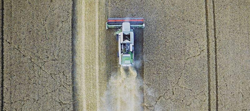 Photographie aérienne d'un agriculteur en tracteur, en train de moissonner son champs de céréales pour produire des aliments bio