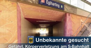 Frau verprügelt 17-Jährige in S-Bahn Quelle Foto Bundespolizei