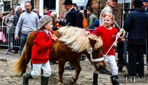 Paardenmarkt in Vianen op woensdag 10 oktober @ Vianen | Vianen | Utrecht | Nederland