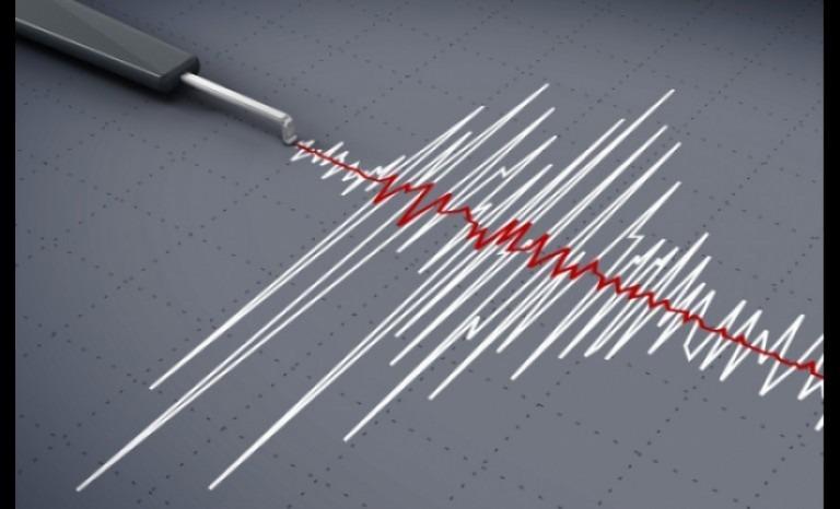Fuerte temblor en La Higuera se sintió en San Juan