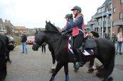 Friese paarden in Huisduinen (foto: Giel Slangen).
