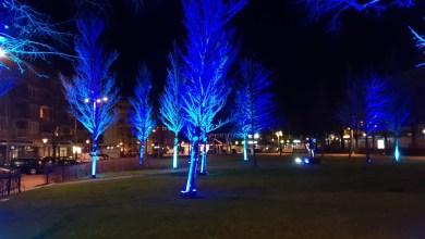 Photo of Dit jaar lichtprojectie op School 7
