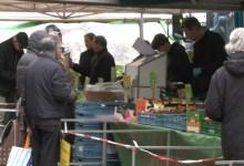 Photo of Redelijk bedrijvig op zaterdagmarkt (video)