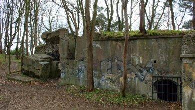 Photo of Online tentoonstelling over Texelse bunkerverhalen
