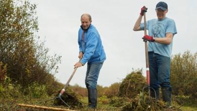 Photo of Provinciale bijdrage voor groene projecten