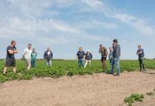 Photo of Waddenfonds investeert in Zoete Toekomst op Texel