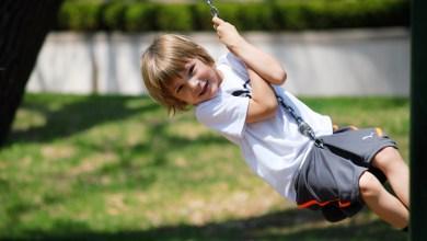 Photo of Gratis zomeractiviteiten via Dorpshuis Julianadorp