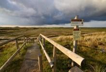 Photo of Geen toegang voor ecologen vakantiepark in duingebied Groote Keeten
