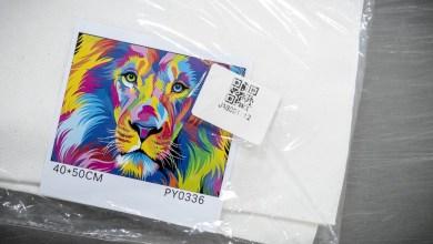 Photo of Helft Noord-Hollandse internetshoppers eerder met cadeaus inkopen