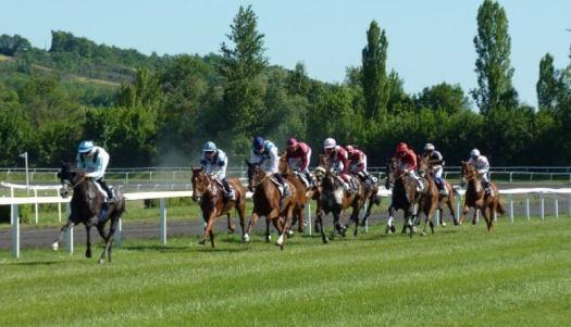 hourse races racing