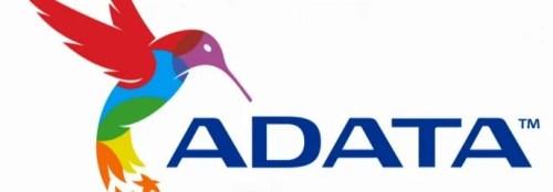 ADATA XPG V2 DDR3 8 GB 2800 MHz Gold   Recensione