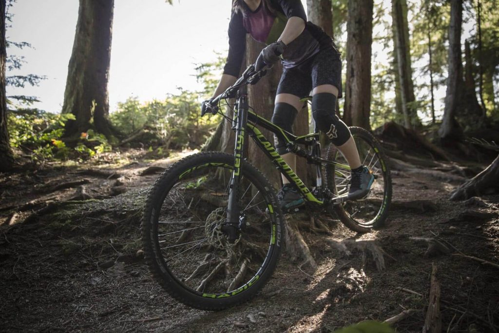 Mountain biker navigating around roots on a shady trail