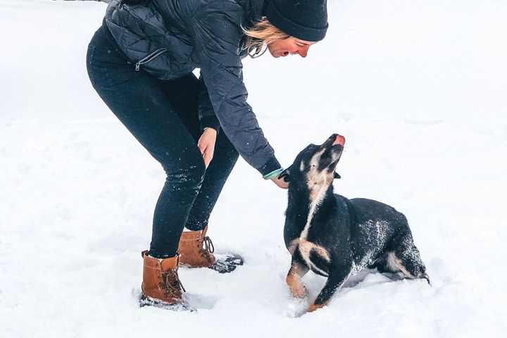 Aubree and puppy playing in the snow. The puppy's tongue is sticking out!