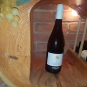 Wein Speisen