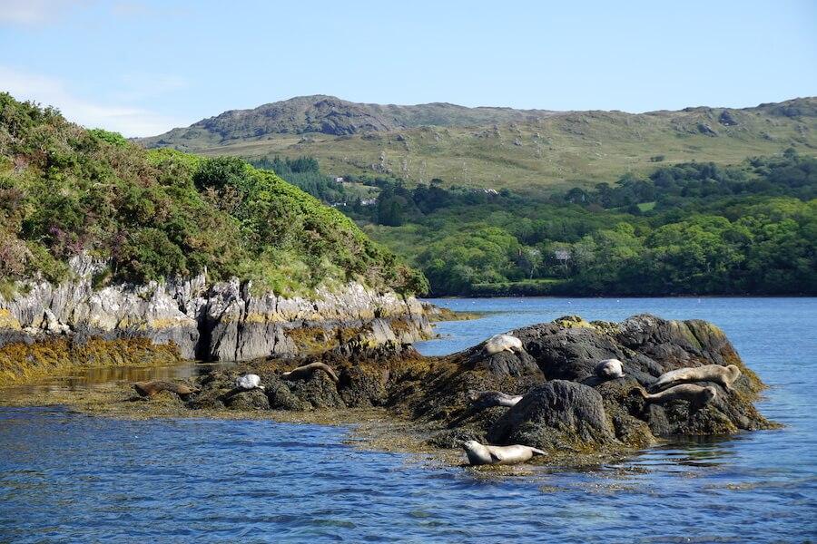 Roadtrip Ierland: Garnish Island