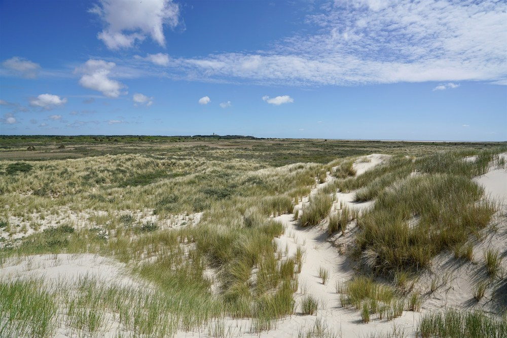 Wat te doen op Terschelling: Noordsvaarder