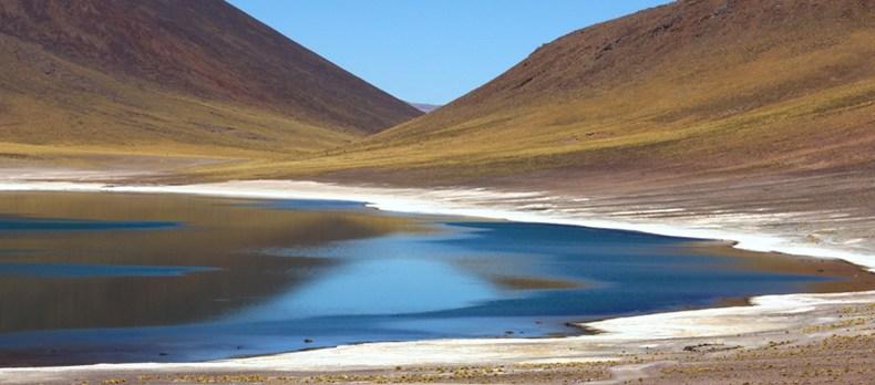 Mehr als nur die trockenste Wüste der Welt