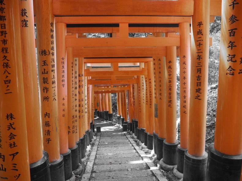 Kyoto, die Unglaubliche – Japan III