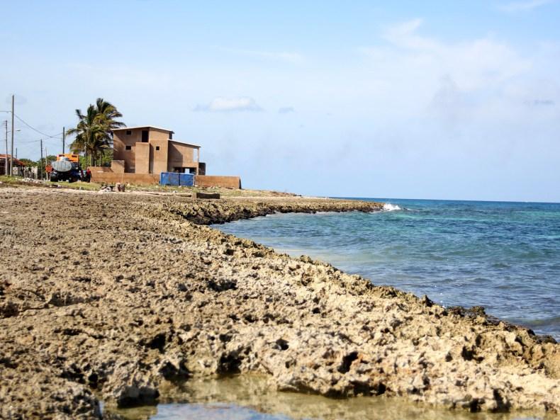 Eine kubanische Odyssee