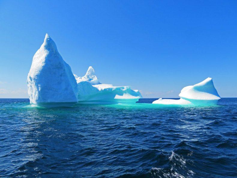Neufundland, das 8. Weltwunder? (2)