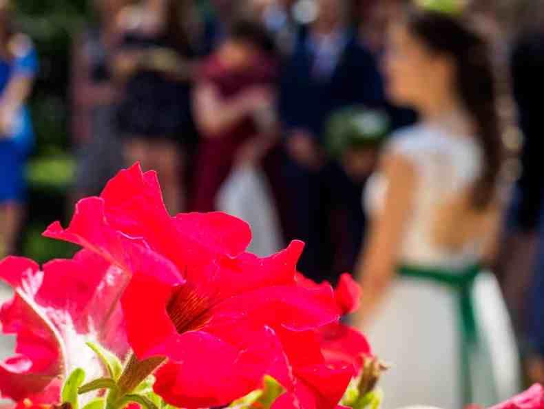 Dracula und die Hochzeit