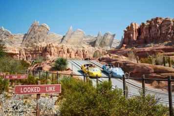 Disney California Adventure 32