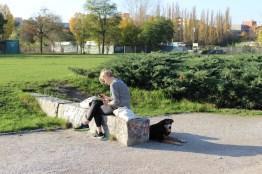 Berlin Mauerpark mit Hund, die letzten Sonnenstrahlen genießen