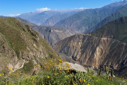 29 - colca canyon_peru (1024x683)