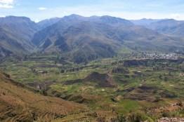 Colca Tal Peru
