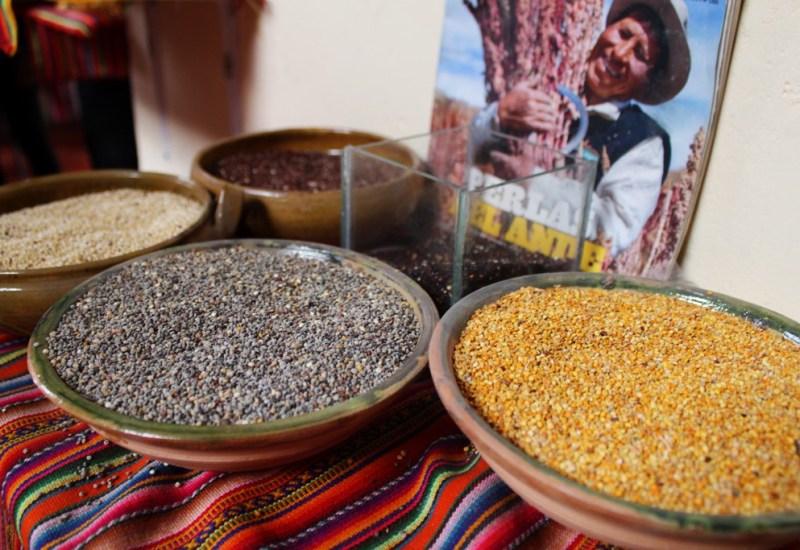 Quinoa Sahmen