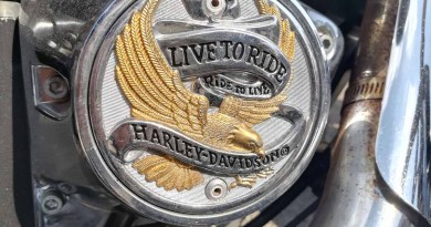 Harley Davidson mieten