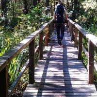 Was kann man auf der Insel Hiiumaa machen